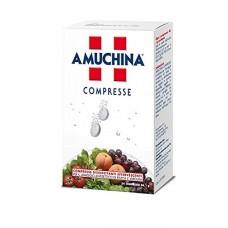 ANGELINI AMUCHINA COMPRESSE 1G 24PZ